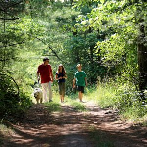 A family with a dog on leash hiking in the forest