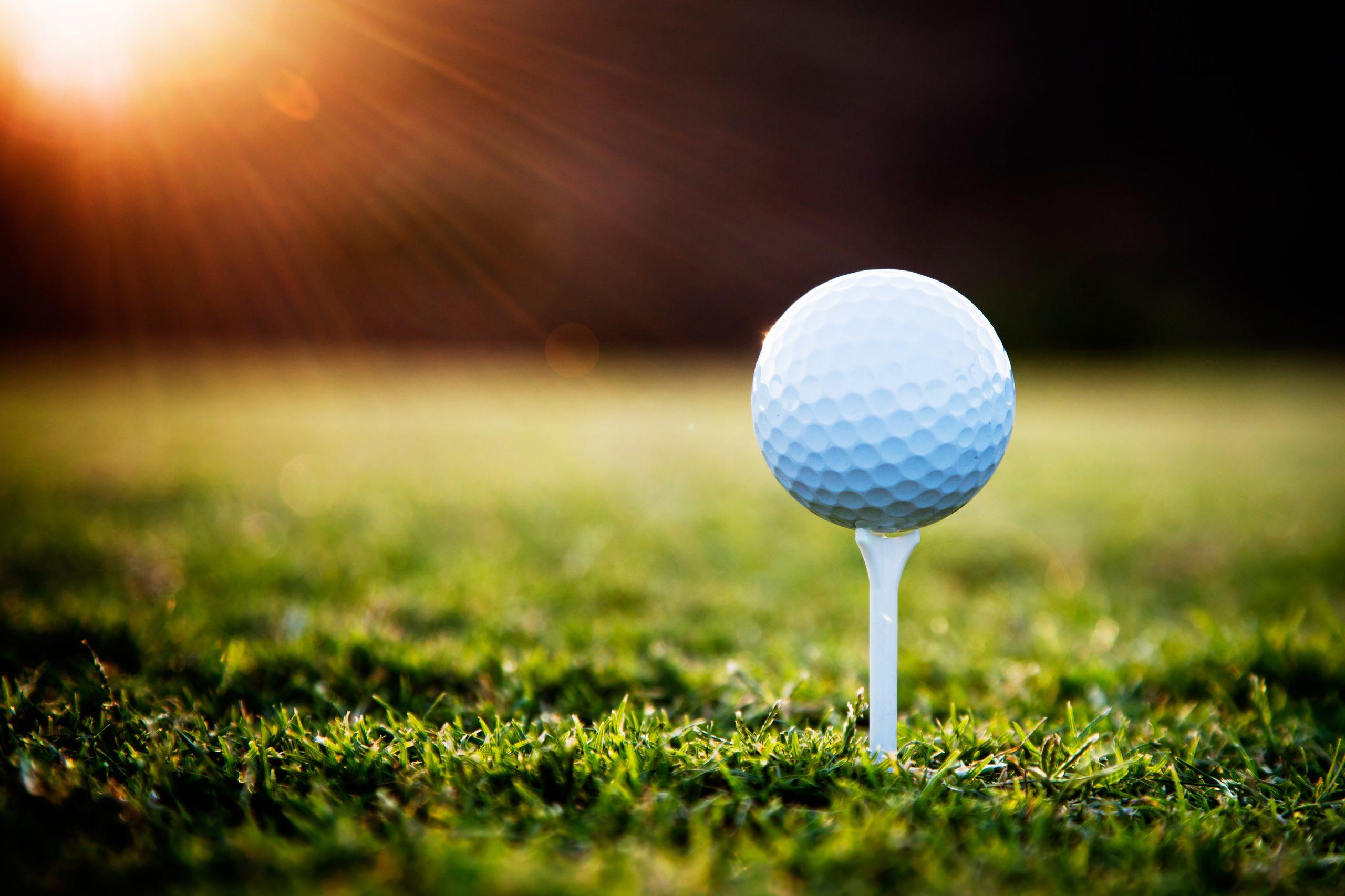 A golf ball on a golf tee