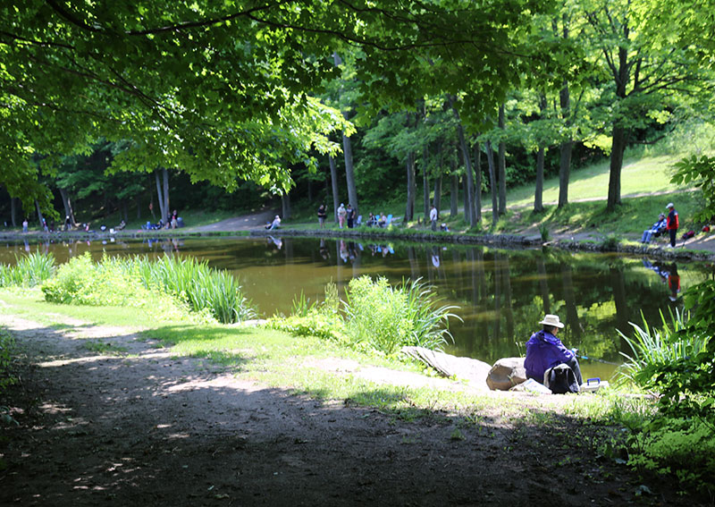 People fishing along the banks of a pond